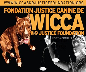 wicca foundation