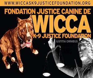 wicca foundation